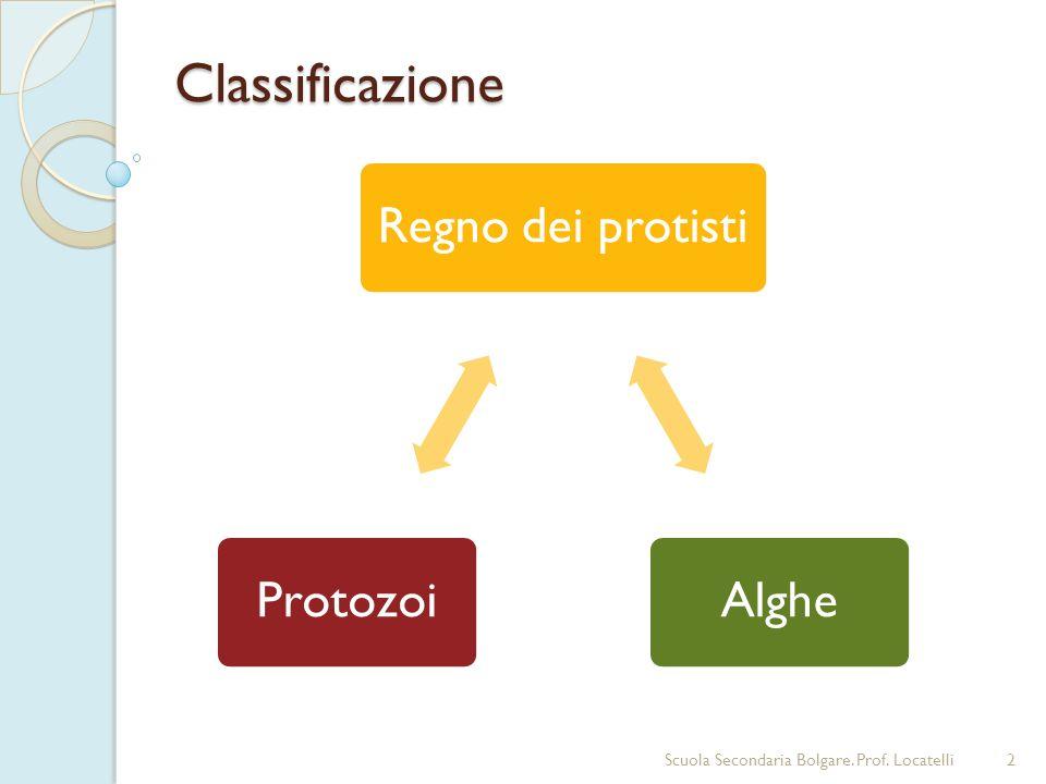 Classificazione 2 Regno dei protistiAlgheProtozoi