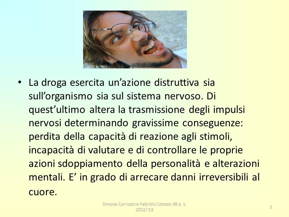 Simone Carrozzo e Fabrizio Catozzo 3B a.s.