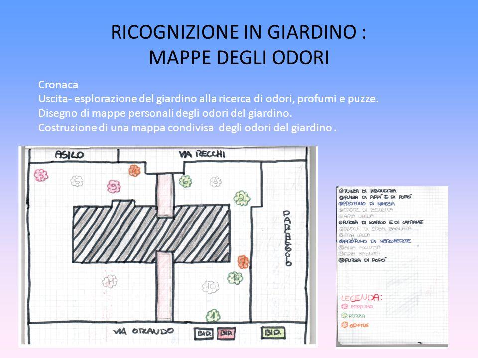 RICOGNIZIONE IN GIARDINO : MAPPE DEGLI ODORI Cronaca Uscita- esplorazione del giardino alla ricerca di odori, profumi e puzze. Disegno di mappe person