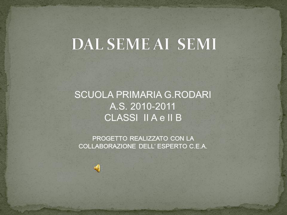 SCUOLA PRIMARIA G.RODARI A.S. 2010-2011 CLASSI II A e II B PROGETTO REALIZZATO CON LA COLLABORAZIONE DELL ESPERTO C.E.A.