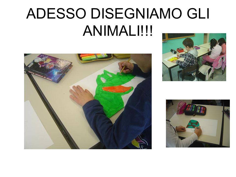 ADESSO DISEGNIAMO GLI ANIMALI!!!