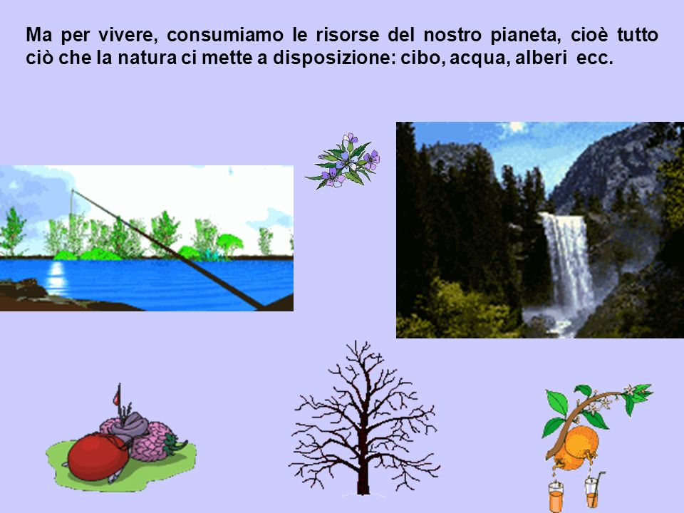 Ma per vivere, consumiamo le risorse del nostro pianeta, cioè tutto ciò che la natura ci mette a disposizione: cibo, acqua, alberi ecc.