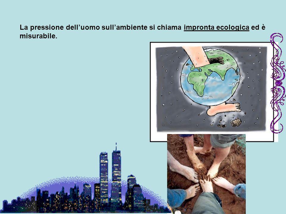 La pressione delluomo sullambiente si chiama impronta ecologica ed è misurabile.