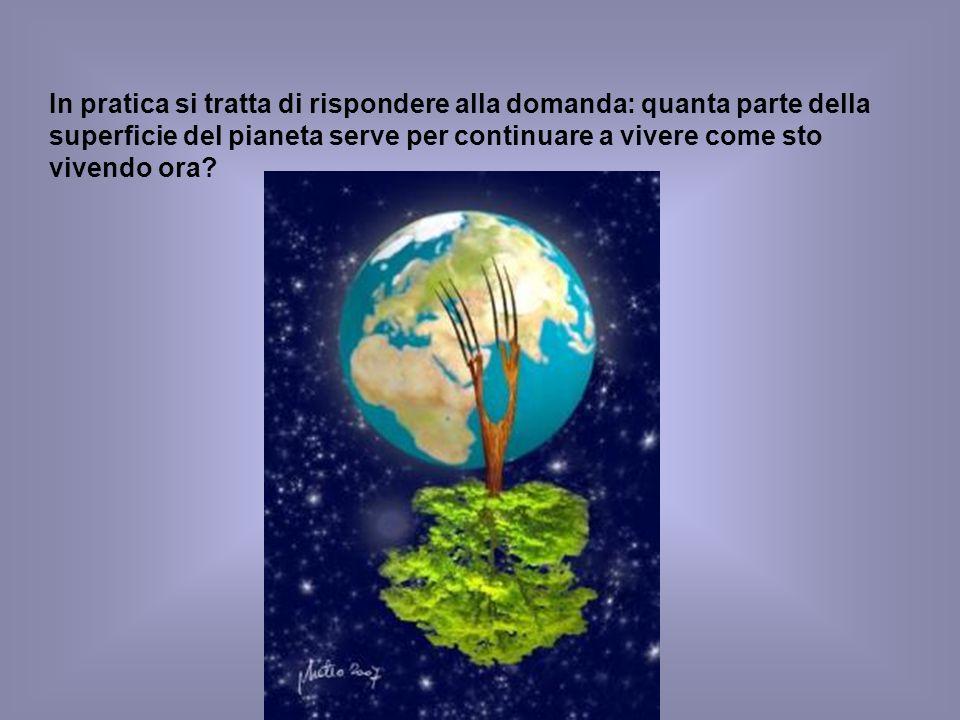 In pratica si tratta di rispondere alla domanda: quanta parte della superficie del pianeta serve per continuare a vivere come sto vivendo ora?