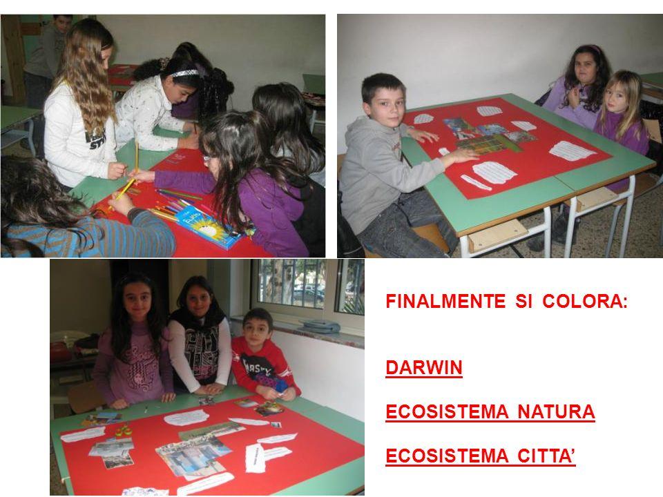 FINALMENTE SI COLORA: DARWIN ECOSISTEMA NATURA ECOSISTEMA CITTA