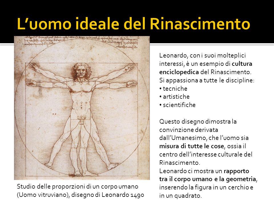 Studio delle proporzioni di un corpo umano (Uomo vitruviano), disegno di Leonardo 1490 Leonardo, con i suoi molteplici interessi, è un esempio di cult