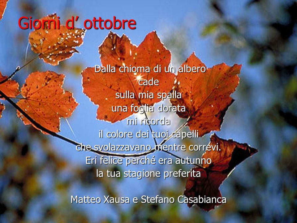 Giorni d ottobre Dalla chioma di un albero Dalla chioma di un alberocade sulla mia spalla una foglia dorata mi ricorda il colore dei tuoi capelli che svolazzavano mentre correvi.