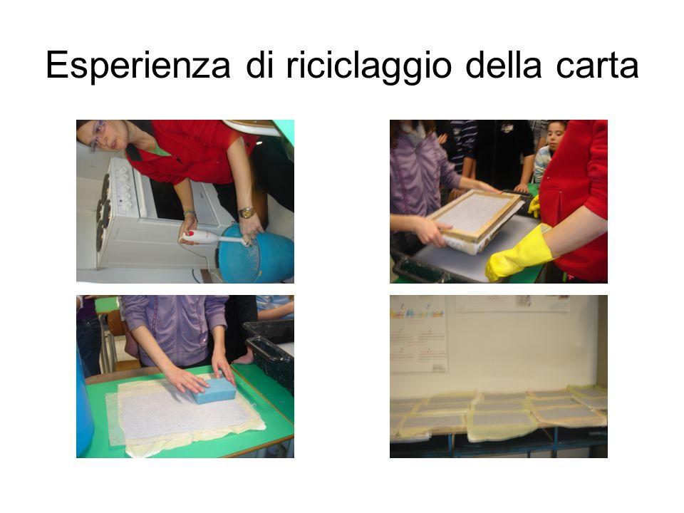 Esperienza di riciclaggio della carta
