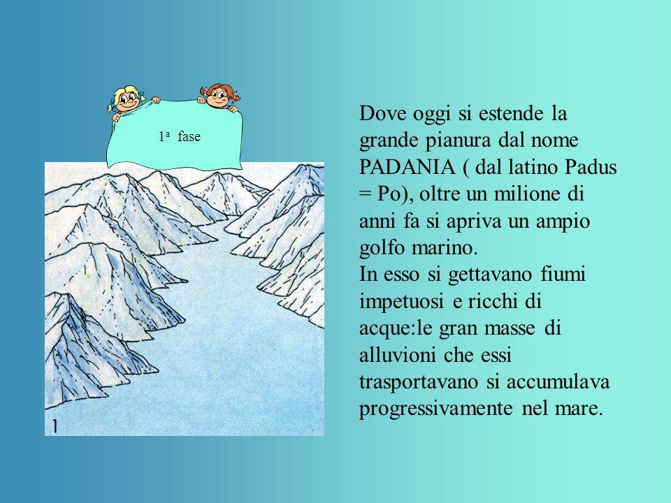 Dove oggi si estende la grande pianura dal nome PADANIA ( dal latino Padus = Po), oltre un milione di anni fa si apriva un ampio golfo marino.