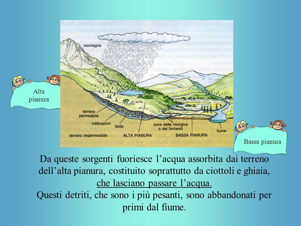 Alta pianura Bassa pianura Da queste sorgenti fuoriesce lacqua assorbita dai terreno dellalta pianura, costituito soprattutto da ciottoli e ghiaia, che lasciano passare lacqua.