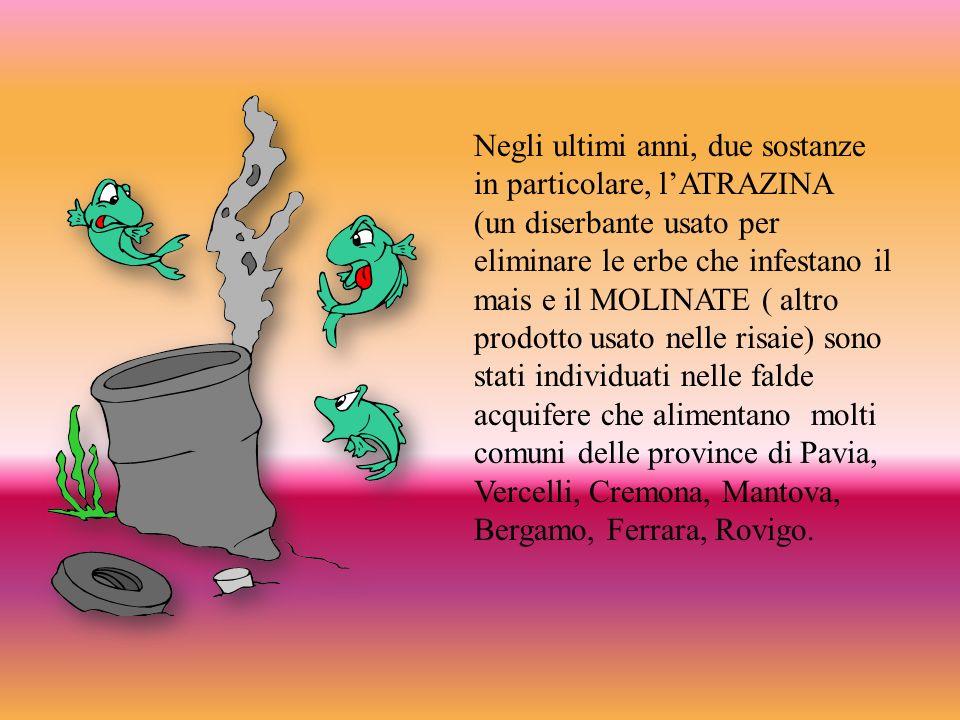 Negli ultimi anni, due sostanze in particolare, lATRAZINA (un diserbante usato per eliminare le erbe che infestano il mais e il MOLINATE ( altro prodotto usato nelle risaie) sono stati individuati nelle falde acquifere che alimentano molti comuni delle province di Pavia, Vercelli, Cremona, Mantova, Bergamo, Ferrara, Rovigo.