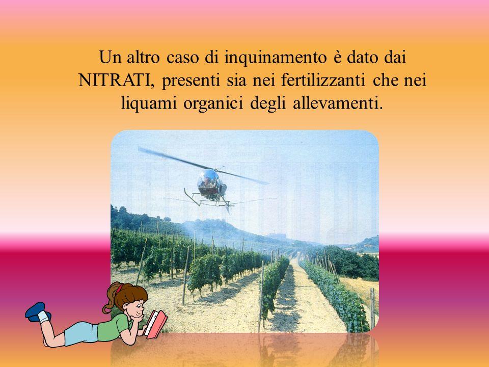 Un altro caso di inquinamento è dato dai NITRATI, presenti sia nei fertilizzanti che nei liquami organici degli allevamenti.