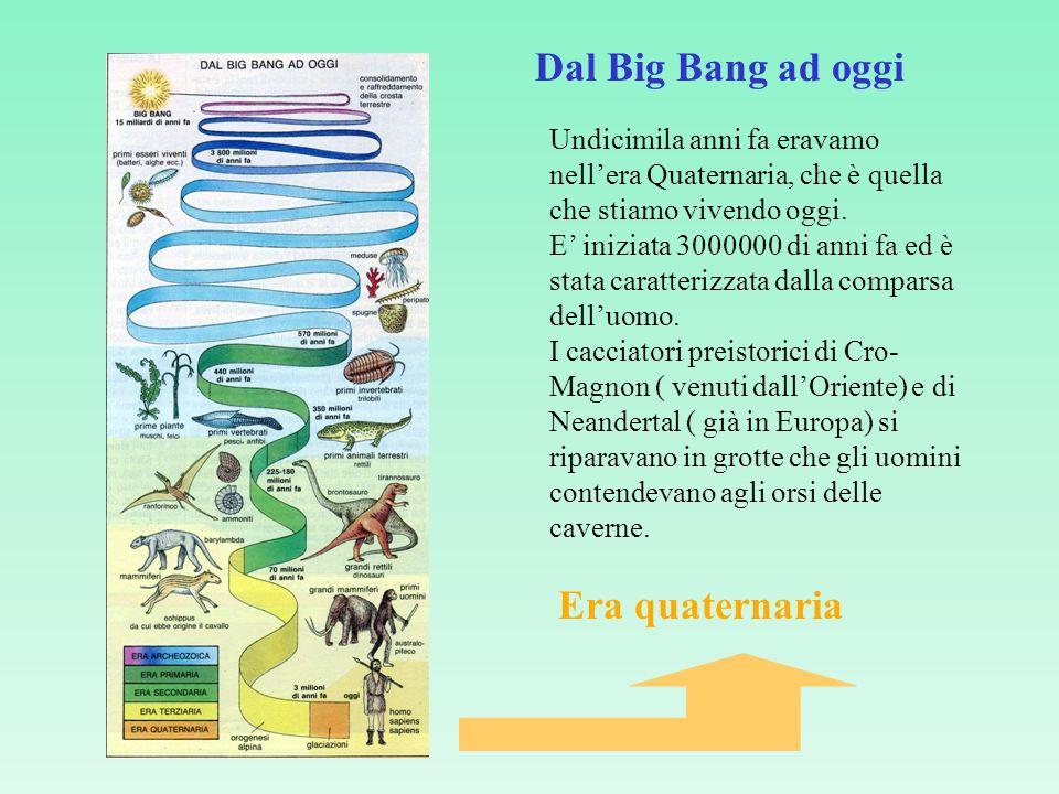 Undicimila anni fa eravamo nellera Quaternaria, che è quella che stiamo vivendo oggi.