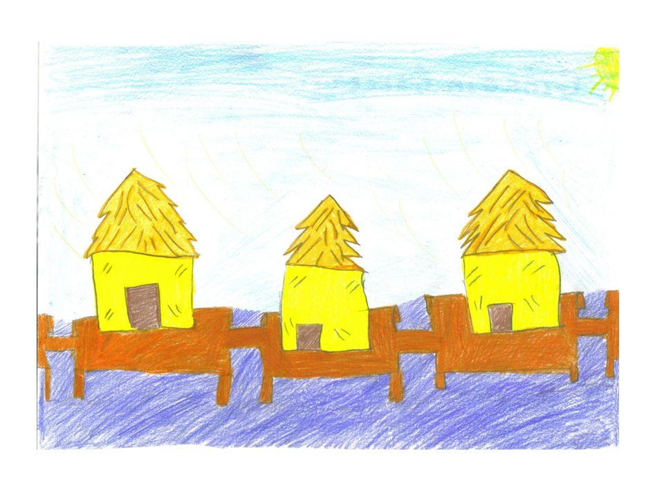Nel Neolitico luomo cominciò a costruire abitazioni (palafitte).