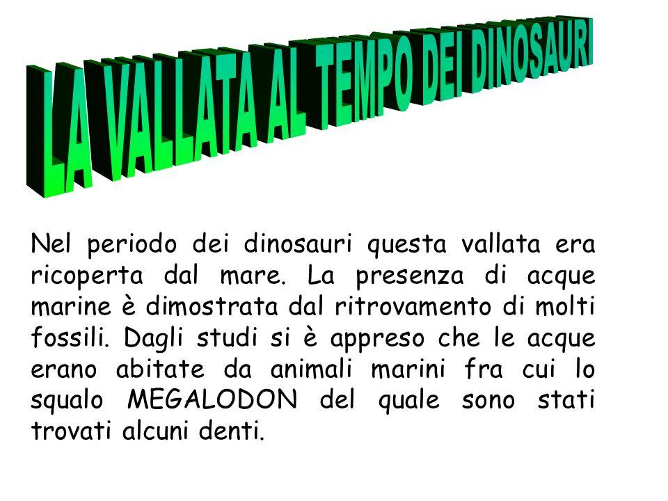 Nel periodo dei dinosauri questa vallata era ricoperta dal mare.