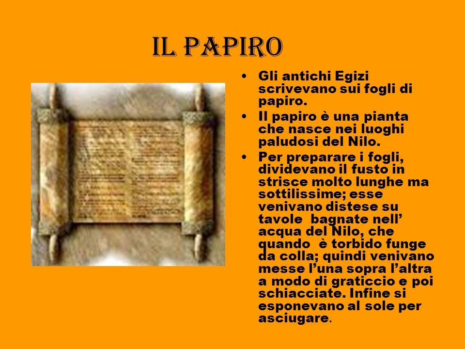 Il copto Il copto era una scrittura piena di dialetti, presa un po da quella greca, utilizzata nel Tardo Egitto nei testi sacri tutte le scritture ven