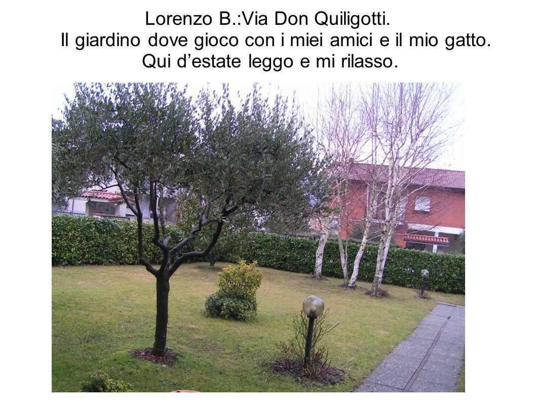 Lorenzo B.:Via Don Quiligotti. Il giardino dove gioco con i miei amici e il mio gatto. Qui destate leggo e mi rilasso.