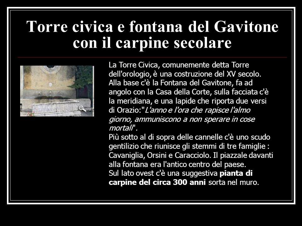 Torre civica e fontana del Gavitone con il carpine secolare La Torre Civica, comunemente detta Torre dell'orologio, è una costruzione del XV secolo. A