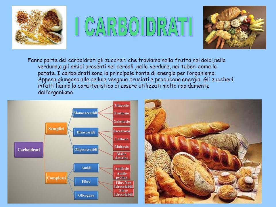 I grassi o lipidi anno anchessi una funzione energetica ma in genere lorganismo non gli utilizza subito come i carboidrati:li accumula e li tiene di riserva per quando non ha a disposizione zuccheri da bruciare.