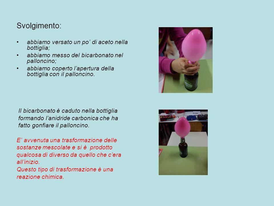 Svolgimento: abbiamo versato un po di aceto nella bottiglia; abbiamo messo del bicarbonato nel palloncino; abbiamo coperto lapertura della bottiglia c