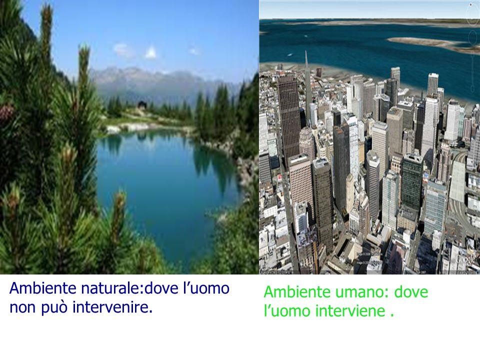 Ambiente naturale:dove luomo non può intervenire. Ambiente umano: dove luomo interviene.