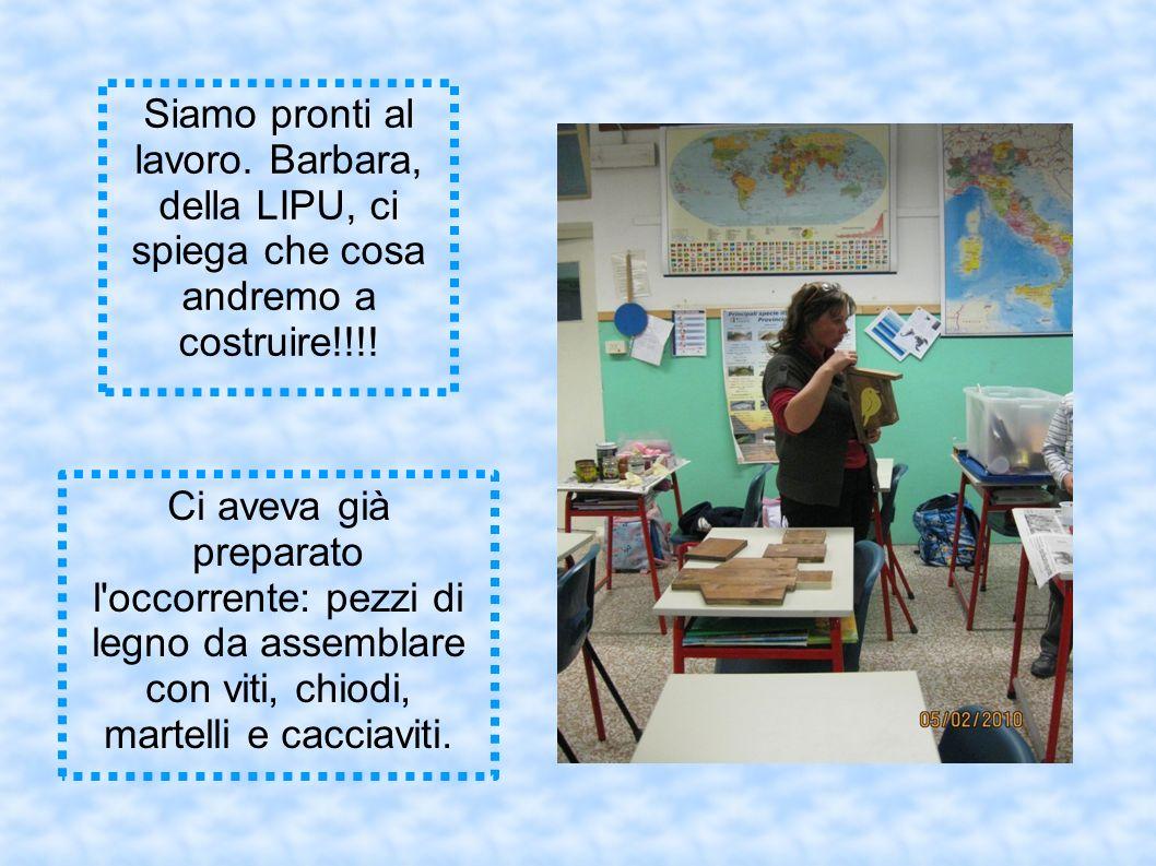 Siamo pronti al lavoro. Barbara, della LIPU, ci spiega che cosa andremo a costruire!!!.