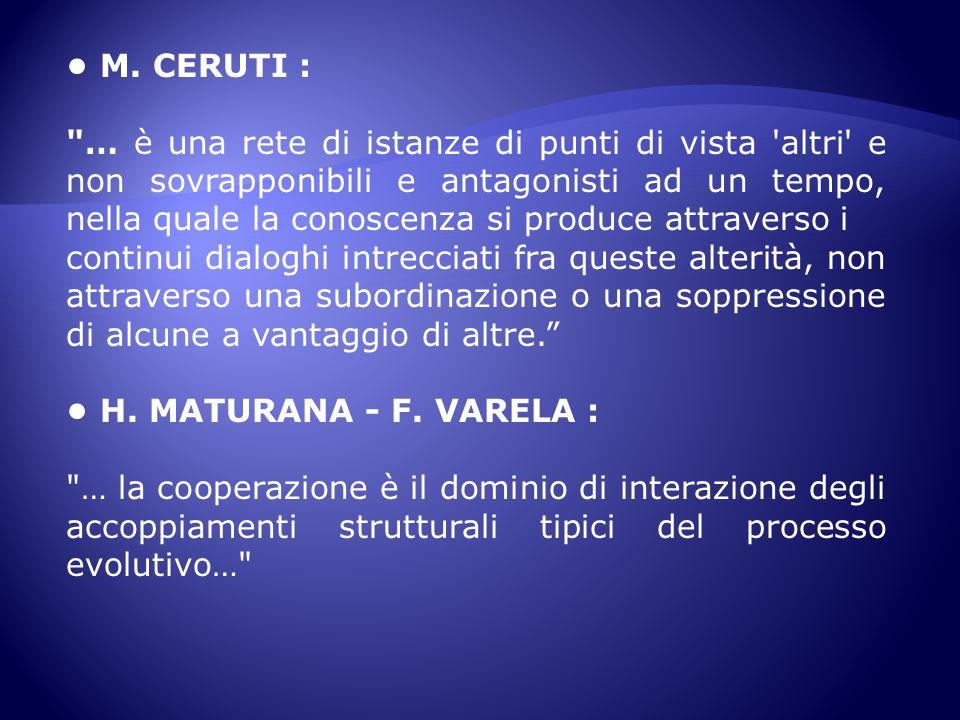 M. CERUTI :