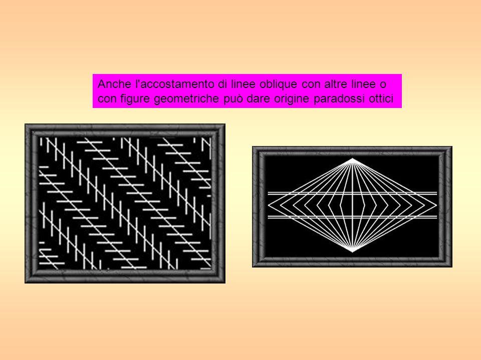 g Anche l'accostamento di linee oblique con altre linee o con figure geometriche può dare origine paradossi ottici