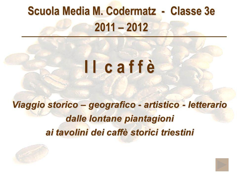 I l c a f f è Viaggio storico – geografico - artistico - letterario dalle lontane piantagioni ai tavolini dei caffè storici triestini Scuola Media M.