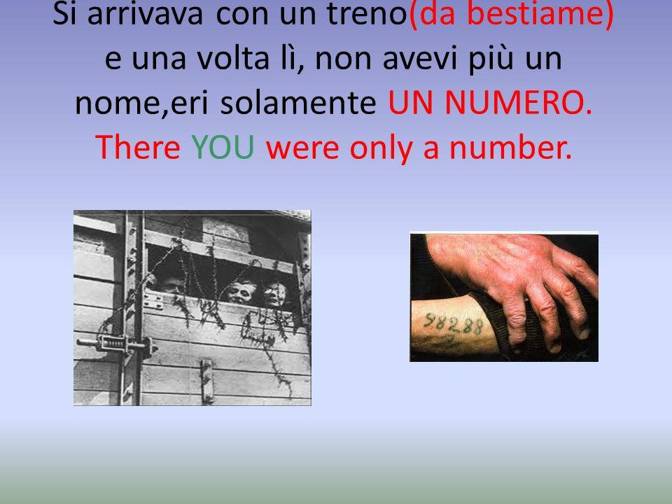 ARBEIT MACHT FREI Con una scritta, che tradotta è così: IL LAVORO RENDE LIBERI. The work makes free