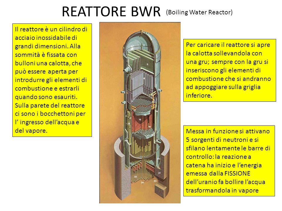 REATTORE BWR Il reattore è un cilindro di acciaio inossidabile di grandi dimensioni. Alla sommità è fissata con bulloni una calotta, che può essere ap