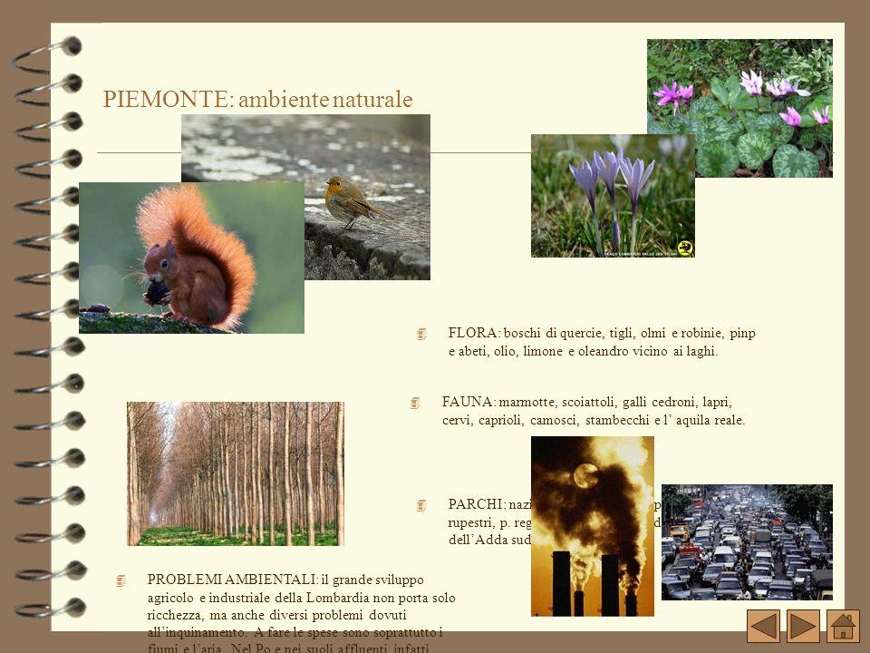 PIEMONTE: ambiente naturale 4 FLORA: boschi di quercie, tigli, olmi e robinie, pinp e abeti, olio, limone e oleandro vicino ai laghi. 4 PARCHI: nazion
