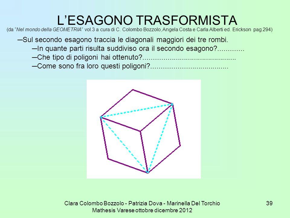 Clara Colombo Bozzolo - Patrizia Dova - Marinella Del Torchio Mathesis Varese ottobre dicembre 2012 39 LESAGONO TRASFORMISTA (da Nel mondo della GEOME