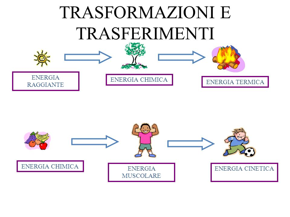 TRASFORMAZIONI E TRASFERIMENTI ENERGIA RAGGIANTE ENERGIA CHIMICA ENERGIA TERMICA ENERGIA CHIMICA ENERGIA MUSCOLARE ENERGIA CINETICA