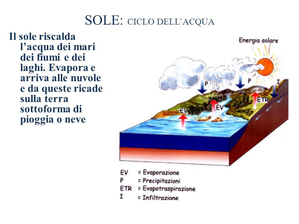 SOLE: CICLO DELLACQUA Il sole riscalda lacqua dei mari dei fiumi e dei laghi. Evapora e arriva alle nuvole e da queste ricade sulla terra sottoforma d