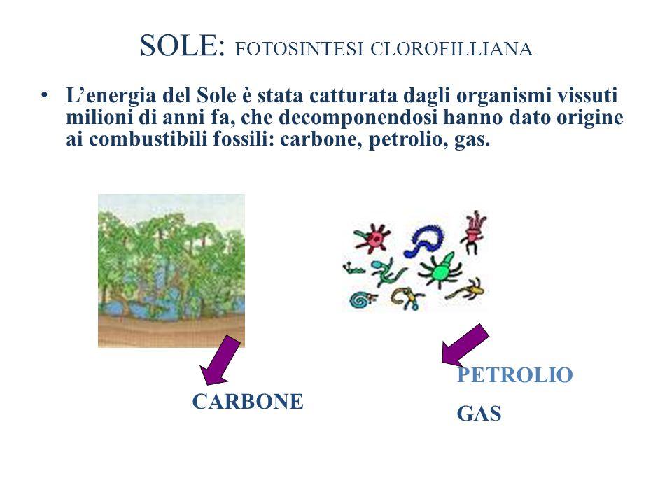SOLE: FOTOSINTESI CLOROFILLIANA Lenergia del Sole è stata catturata dagli organismi vissuti milioni di anni fa, che decomponendosi hanno dato origine