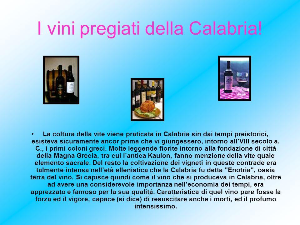 I vini pregiati della Calabria! La coltura della vite viene praticata in Calabria sin dai tempi preistorici, esisteva sicuramente ancor prima che vi g