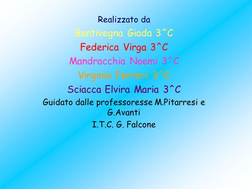 Realizzato da Bentivegna Giada 3^C Federica Virga 3^C Mandracchia Noemi 3^C Virginia Ferreri 3^C Sciacca Elvira Maria 3^C Guidato dalle professoresse