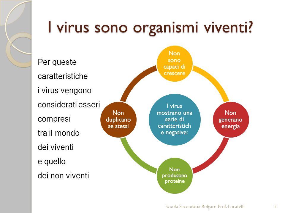 Dimensioni I virus sono visibili solo al microscopio elettronico Le loro dimensioni sono comprese tra 15nm e 350nm Scuola Secondaria Bolgare.