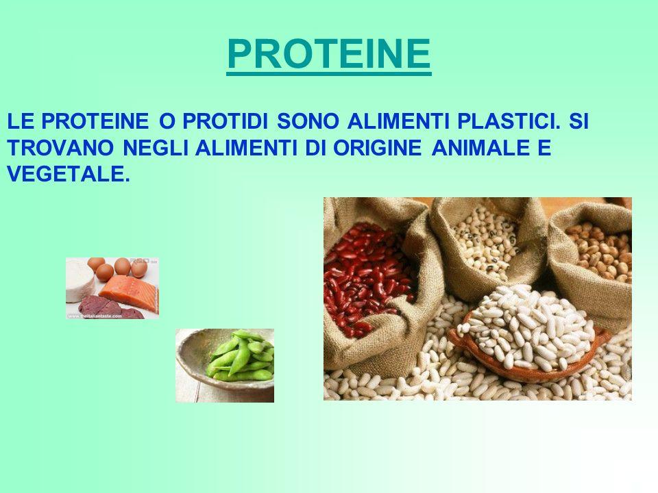 PROTEINE LE PROTEINE O PROTIDI SONO ALIMENTI PLASTICI. SI TROVANO NEGLI ALIMENTI DI ORIGINE ANIMALE E VEGETALE.