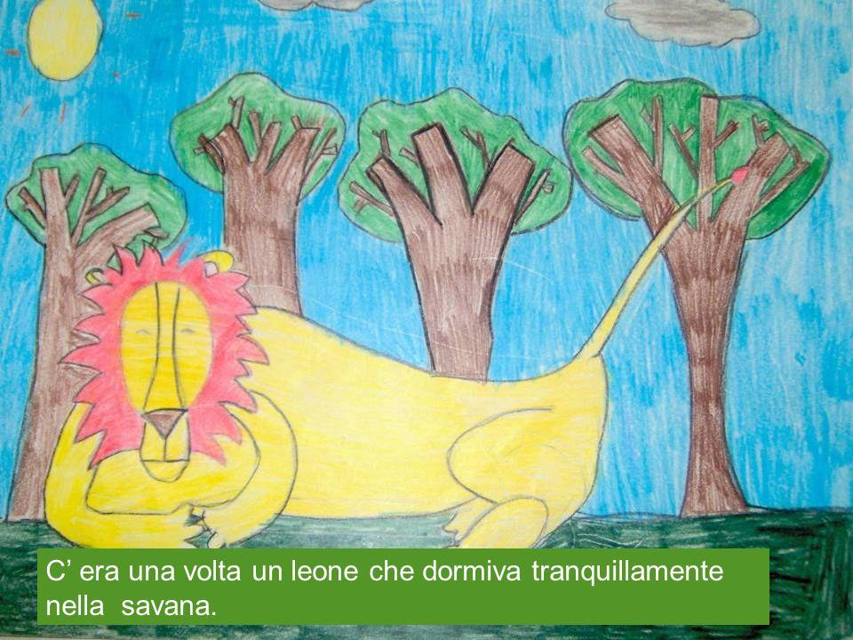 C era una volta un leone che dormiva tranquillamente nella savana.