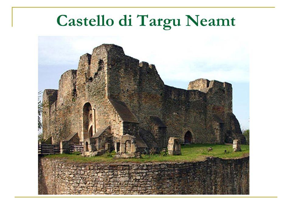 Castello di Targu Neamt