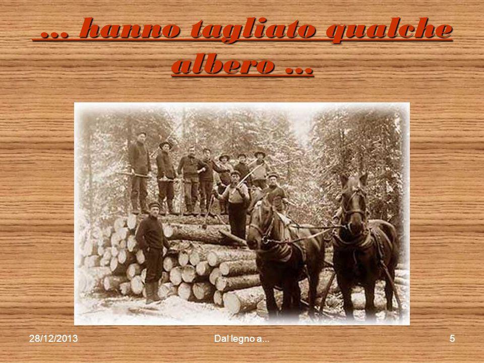 28/12/2013Dal legno a...4 Il legno comincia dall…albero Il legno comincia dall…albero Quanti sono gli alberi? Dove sono? Sono tutti uguali? È giusto t