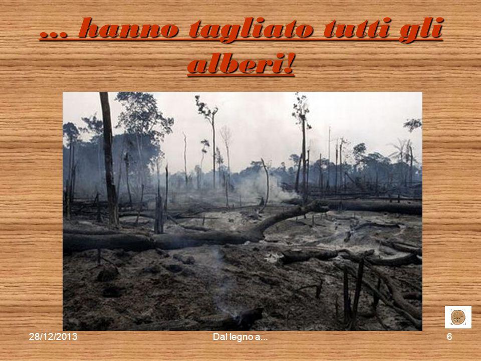 28/12/2013Dal legno a...5 … hanno tagliato qualche albero … … hanno tagliato qualche albero …