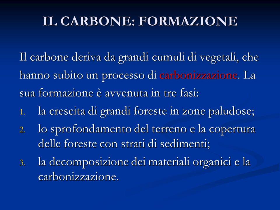 IL CARBONE: FORMAZIONE Il carbone deriva da grandi cumuli di vegetali, che hanno subito un processo di carbonizzazione. La sua formazione è avvenuta i