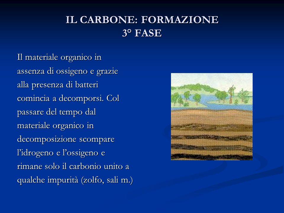 IL CARBONE: FORMAZIONE 3° FASE Il materiale organico in assenza di ossigeno e grazie alla presenza di batteri comincia a decomporsi. Col passare del t