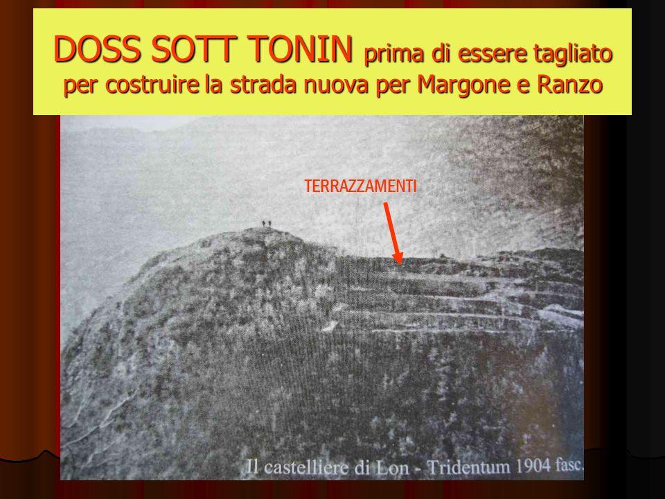 TERRAZZAMENTI DOSS SOTT TONIN prima di essere tagliato per costruire la strada nuova per Margone e Ranzo