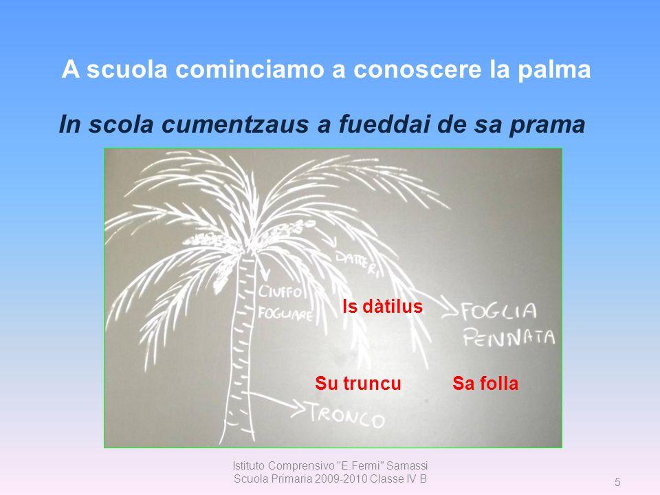 36 Istituto Comprensivo E.Fermi Samassi Scuola Primaria 2009-2010 Classe IV B