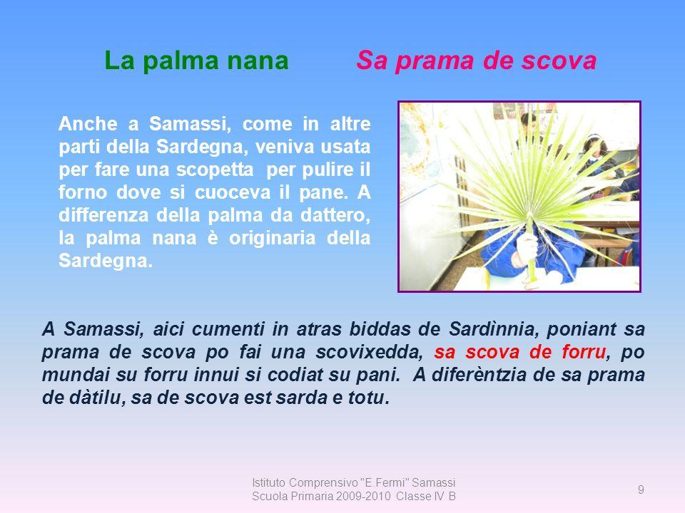 40 Istituto Comprensivo E. Fermi Samassi Scuola Primaria 2009-2010 Classe IV B