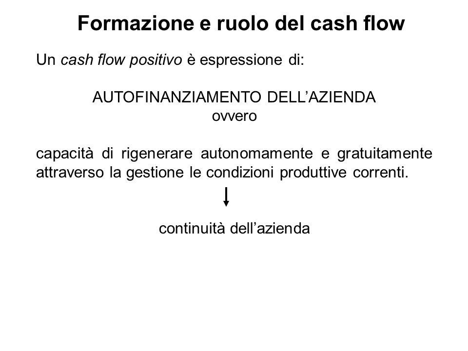 Formazione e ruolo del cash flow Un cash flow positivo è espressione di: AUTOFINANZIAMENTO DELLAZIENDA ovvero capacità di rigenerare autonomamente e g